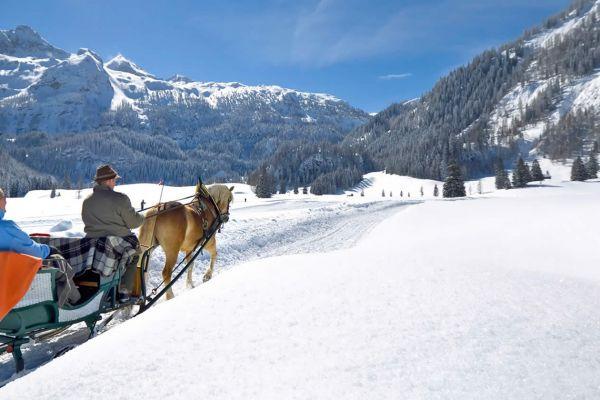 horse drawn sleigh rides hotel almschlössl schrotteralm obertauern